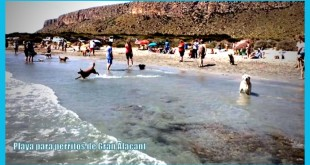 La playa para perritos de Gran Alacant